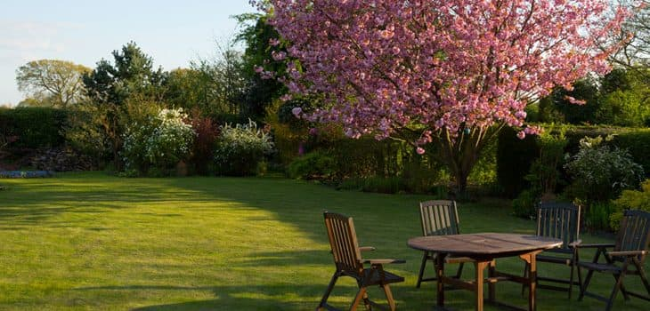 Trend for maximising garden space boosting sales